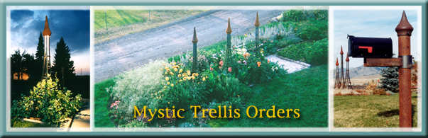 Order your steel trellis product here